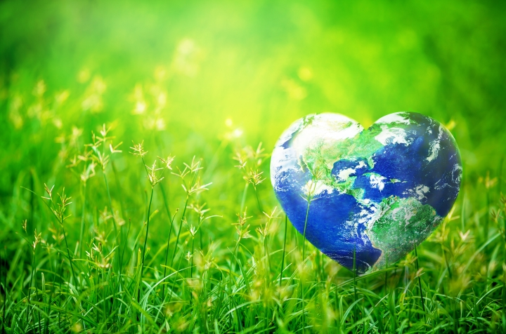 Four Inexpensive Ways To Be More Environmentally Sustainable