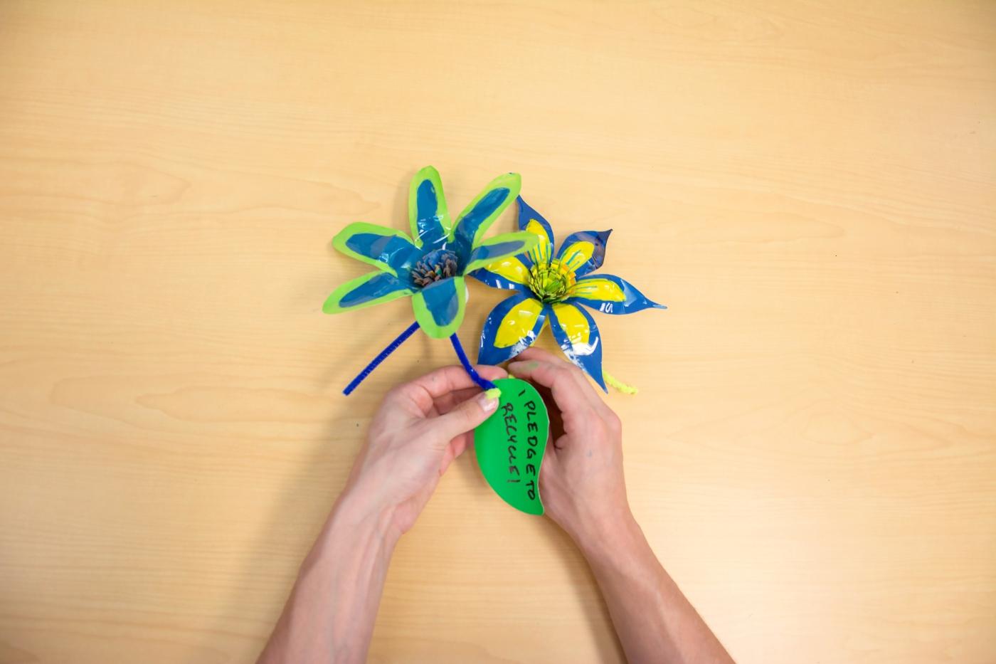 eco-pledge flower.jpg